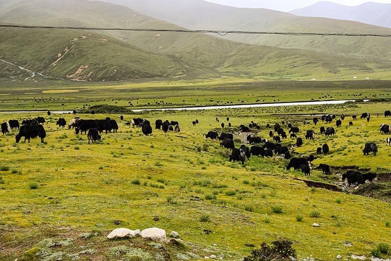 川藏公路全程多少公里 7.jpg